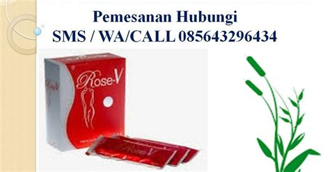 Obat Herbal Nasa v minuman herbal produk nasa distributor obat
