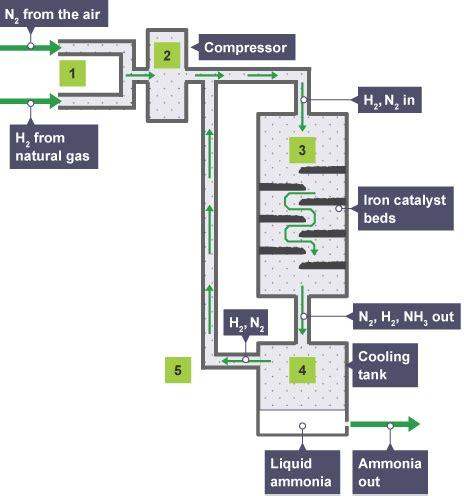diagram of haber process gcse bitesize science ammonia revision
