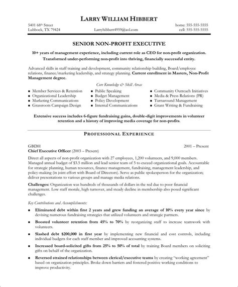 non profit executive free resume sles blue sky resumes