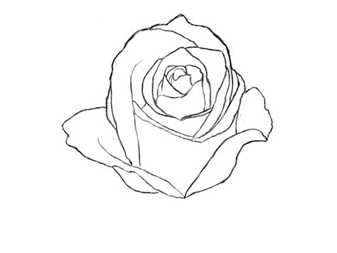 how to draw doodle roses how to draw a draw central