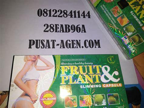 obat pelangsing fruit plant pelangsing herbal