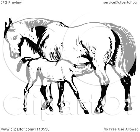 clipart mare clipart of a retro vintage black and white mare and