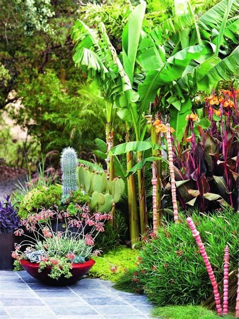 tropical plants for backyard 25 best ideas about tropical garden design on
