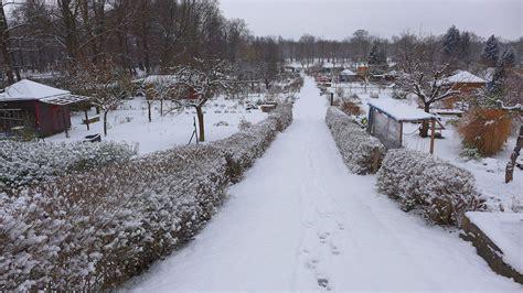 garten winter 01 winter im garten pillnitzer gartenfreunde e v