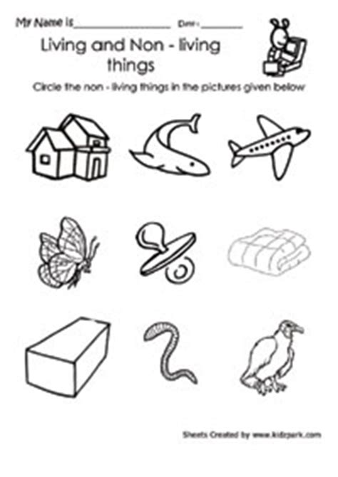 Living And Nonliving Things Worksheets Pdf by Circle The Non Living Thing Worksheet Home Schooling