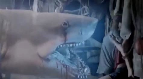 film ghost shark ghost shark trailer new syfy tv movie to blow