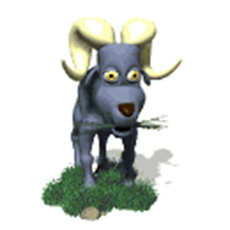 imagenes gif animales canalred gt galeria de imagenes animadas de animales cabras