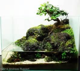 2014 aga aquascaping contest 147