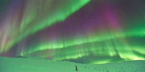 Can You See The Northern Lights In Alaska by Trip Flights To Alaska Are On Sale For 280