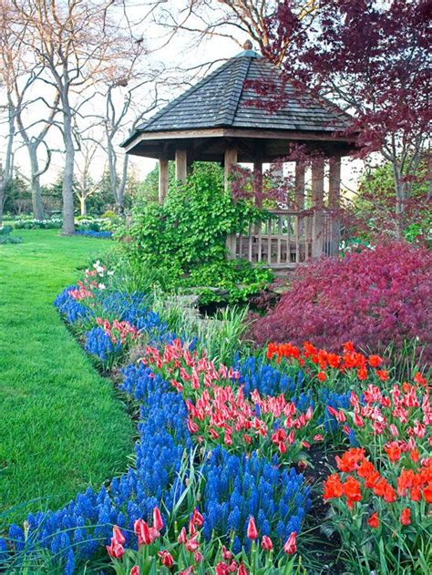 color garden gardens hue and flower on