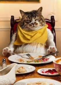 Cat Sitting Meme - fat cat sitting at table eating art cat fat