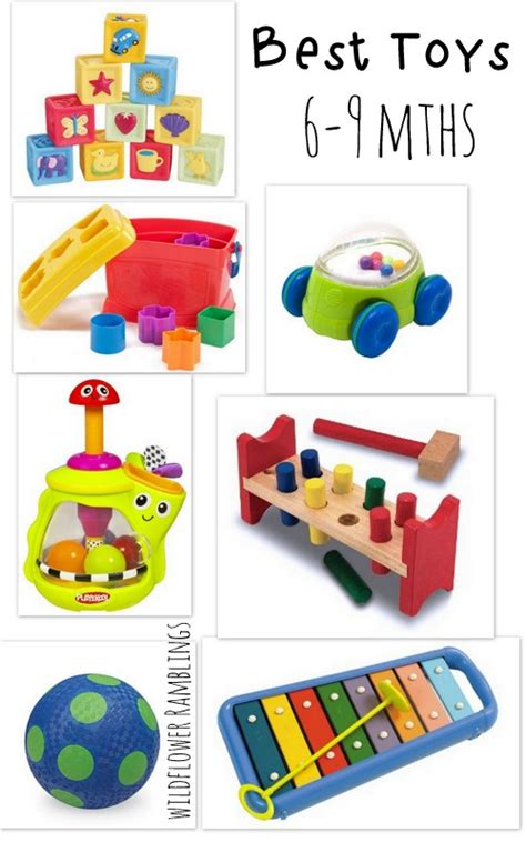 best toy for 6 month old toys model ideas