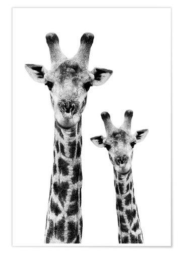 Philippe HUGONNARD Safari Profile Collection - Portrait of