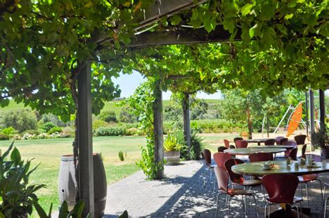 Tin Shed Cafe Mclaren Vale by Corners And Moments A Day S Affair In Mclaren Vale