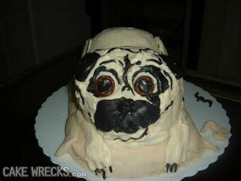 dog cake fails   unbelievably bad barkpost