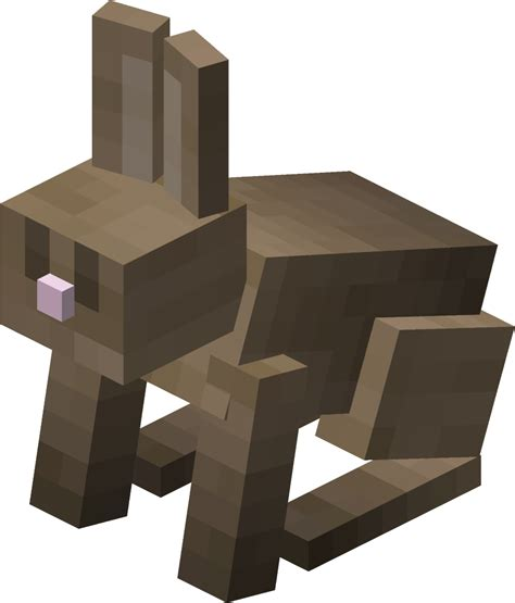 minecraft rabbit coloring pages rabbit official minecraft wiki