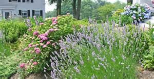 Garden Of Cape Cod Best For Cape Cod 171 Hyannis Country Garden