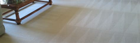 upholstery cleaning fort worth carpet cleaning fort worth tx