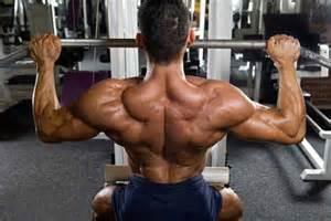 trapezius muscles functional muscles pathology