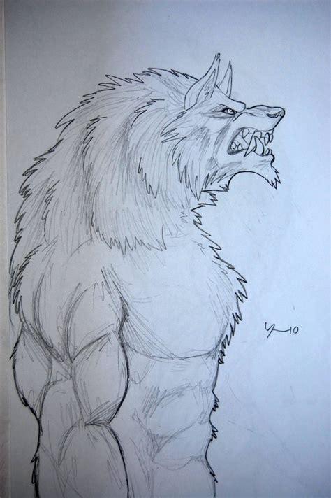 step 10 how to draw a werewolf transformation werewolf werewolf drawing 10 by tribalwolfie on deviantart