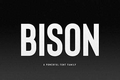 bison bold demo font creativebooster