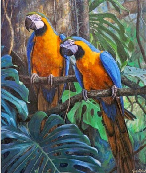 imagenes artisticas bidimensionales las 25 mejores ideas sobre pinturas de aves en pinterest y