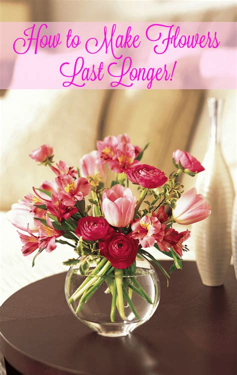 How To Keep Cut Flowers Fresh In Vase by How To Make Flowers Last Longer In A Vase