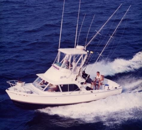 charter boat fishing rehoboth beach 17 best images about fishing boats on pinterest small