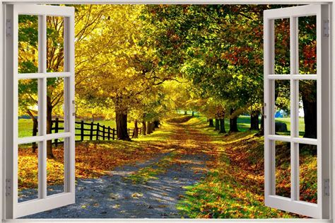 huge  window view beautiful leafy lane wall sticker film