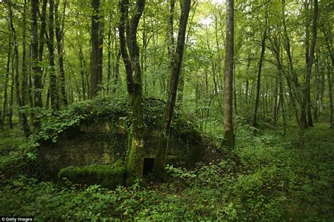 refugee boat hoax battle of verdun french forest is still littered with ww1