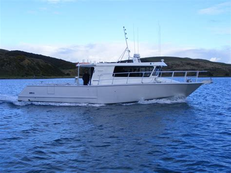 aluminum fishing boats new zealand aluminum boats new zealand