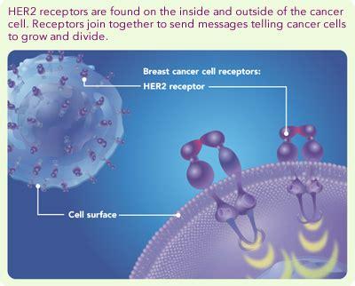 Obat Xeloda targeted therapy pada kanker payudara weblog kanker payudara