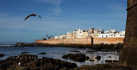 Outdoor Pools by Le Jardin Des Douars Essaouira Morocco Must See Places
