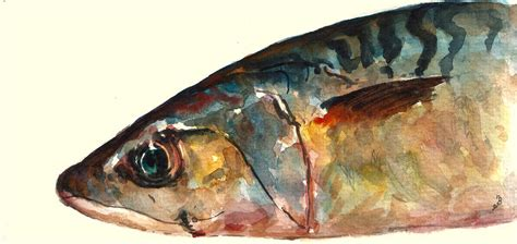 28 paintings for sale buy original archive original mackerel fish painting by juan bosco