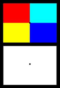 inc color image opponent after images