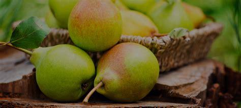 Delmonte Halves 825g monte europe prepared fruits pear halves in syrup