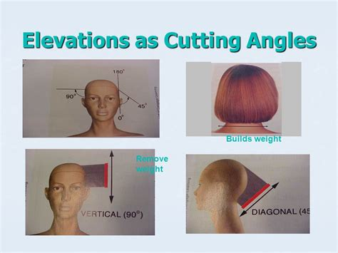 hair cutting angles hair cutting reference points are used to establish design