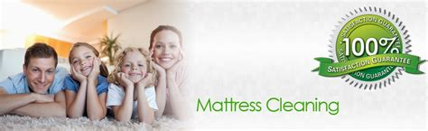 upholstery cleaning orange county carpet cleaning orange county carpet cleaning pet