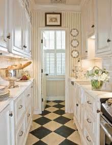 Tiny Galley Kitchen Designs 47 Best Galley Kitchen Designs Decoholic