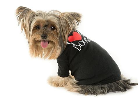 yorkie store quot i my doorman quot doggie the new yorkie store