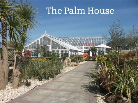 the palm house weymouth tourist information and events