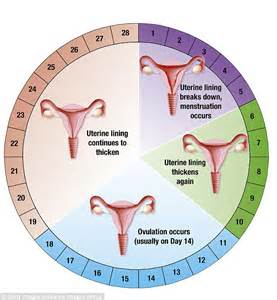 how long does mood swings last in pregnancy premenstrual dysphoric disorder may be caused by a