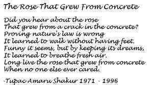 2pac the rose that grew from the concrete jojo s talent