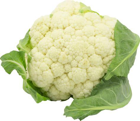 buy vegetable purees buy fruit purees vegetable purees