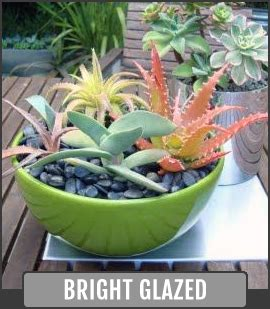 Bright Planters by Glazed Pottery Gardening Planters From Arizona Pottery
