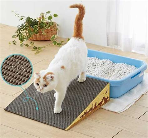 slope anxiety cat litter box r cleans kitty paws eases feline
