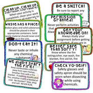Science lab safety rules poster i will survive tips for teaching lab