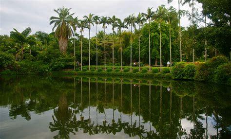 Xishuangbanna Tropical Botanical Garden Xishuangbanna Tropical Botanical Garden In China S Yunnan China Org Cn