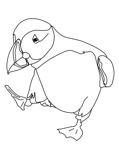 printable for kids com dancing puffin coloring page free printable coloring pages