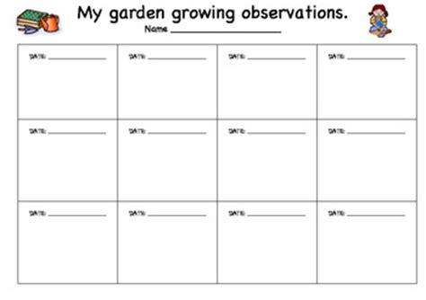 plant growing observation sheet by kristy myatt tpt